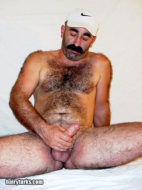 Hairy Turk 68