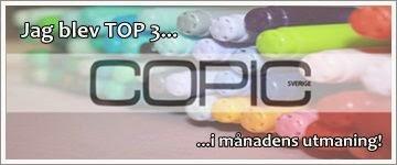 http://copicmarkersverige.blogspot.se/2015/01/cms-20-monochromatiskt.html