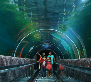 Under Water Tunnel Aquarium
