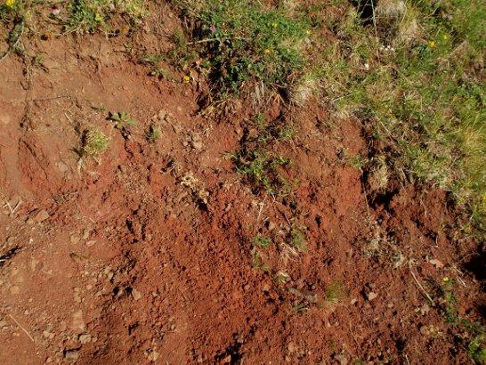 Il deposito di terra rossa sul monte Baldo