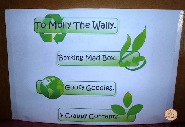 Molly The Wallys' Barking Mad Box 2!