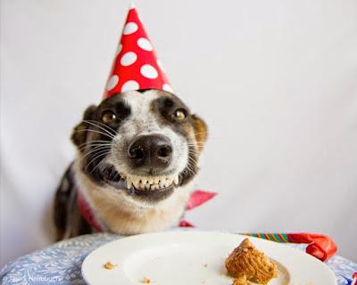5. В небольшой группе людей вероятность того, что у двоих из них день рождения приходится на один и тот же день, составляет почти 100%