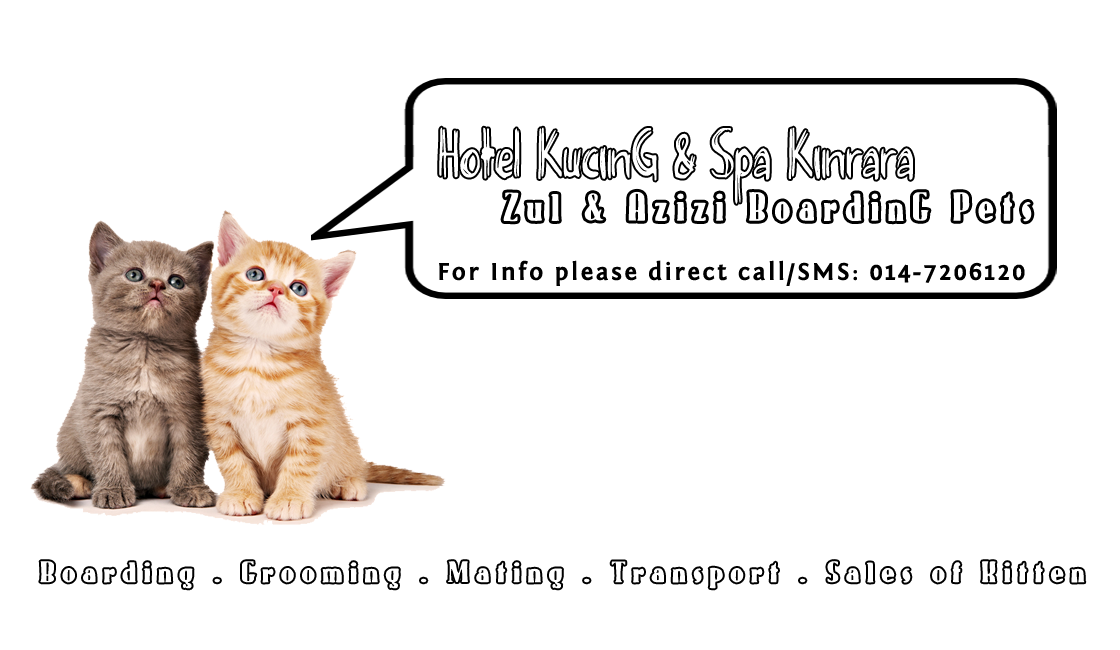Zul n Azizi Boarding Pets