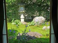華頭窓から西庭の灯籠と桔梗を観る
