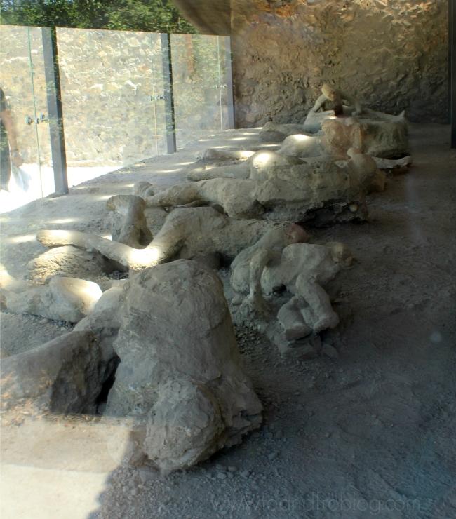 preserved bodies; pompeii, italy