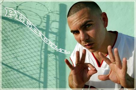 Pitbull dirty lyrics