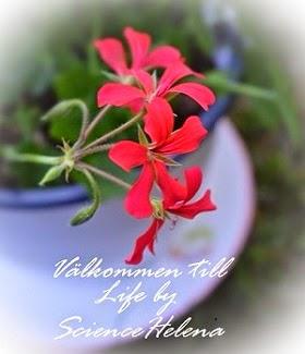 Välkommen till Life by ScienceHelena