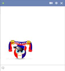 Costa Rica football fan
