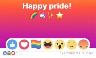 Facebook intervine BRUTAL în bătălia pentru promovarea căsătoriilor homosexuale
