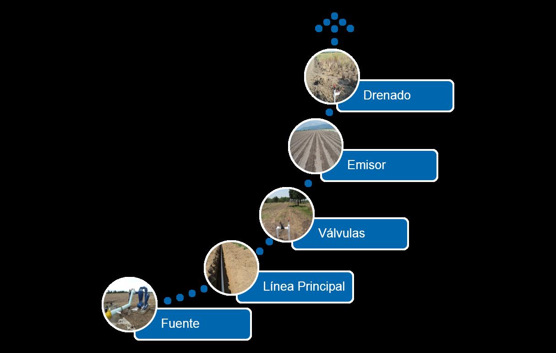 Componentes de los sistemas de riego por goteo - Sistemas de goteo ...