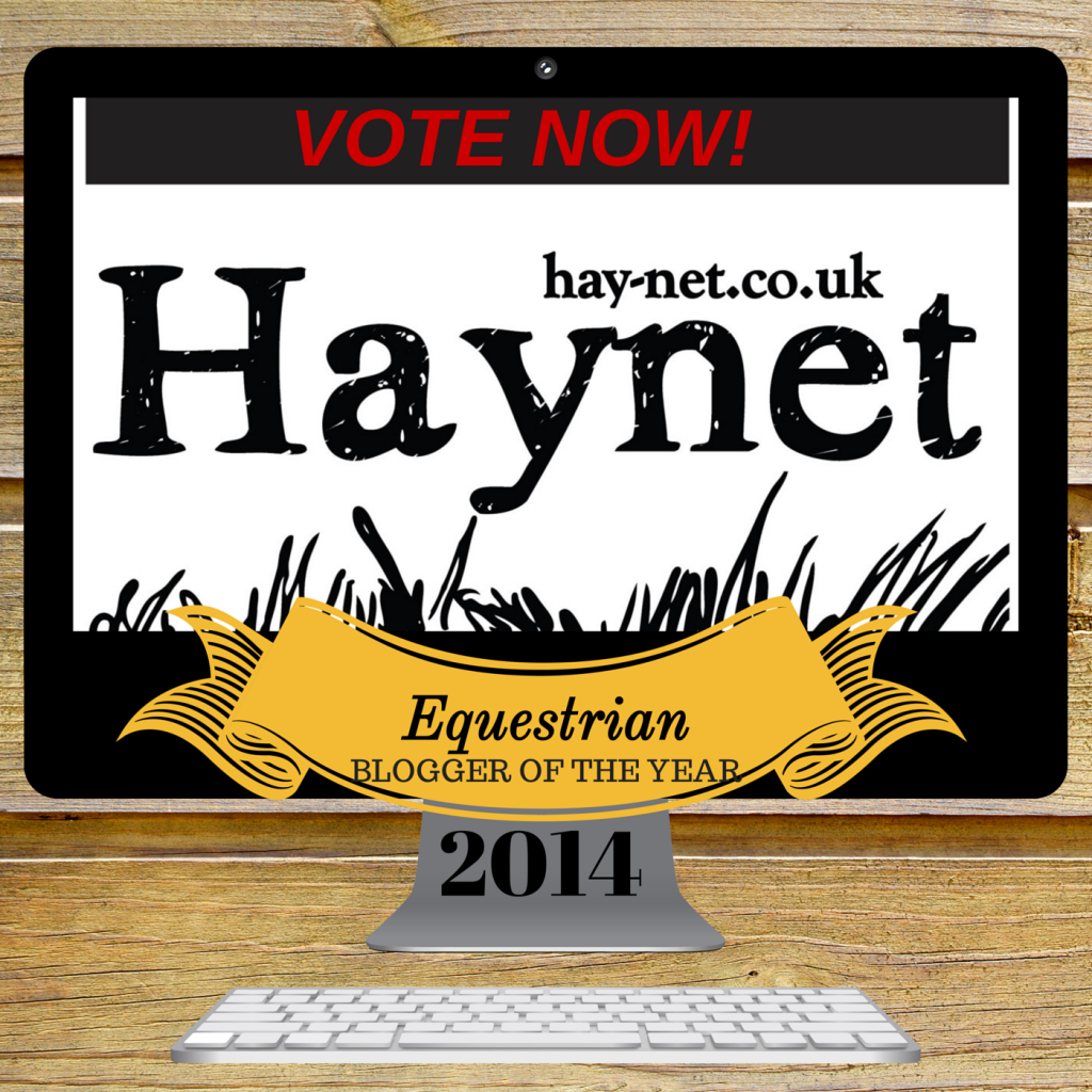 A Filly's Best Friend: Haynet Equestrian Blogger of the Year