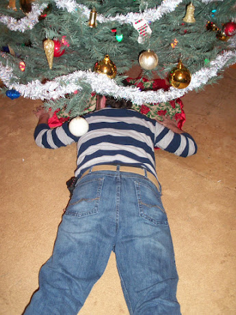 Jimmy, exhausted from all the decorating takes a nap under the tree