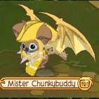 MisterChunkyBuddy