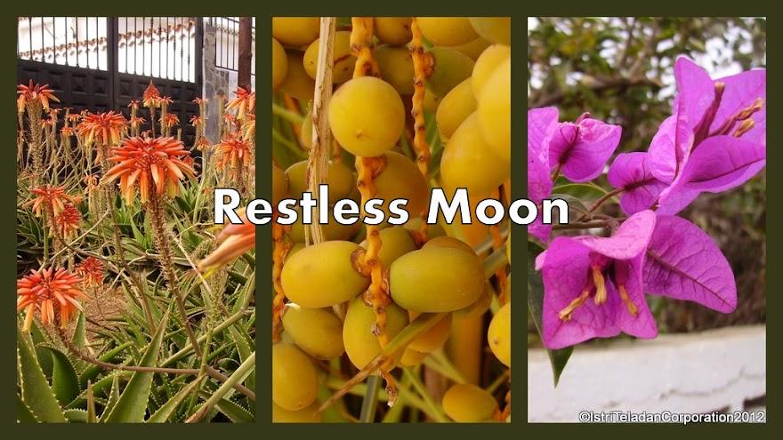 Restless Moon