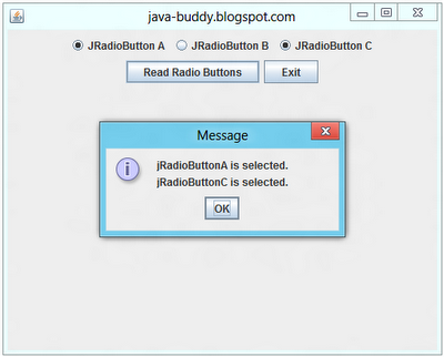 Example of using Swing JRadioButton