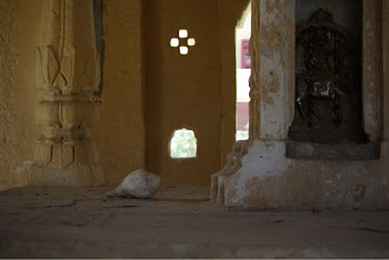 INDIA 2011: Inside a deserted shrine