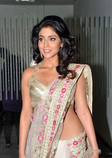 Shriya Saran in Golden Choli and Designer Saree Stunning Spicy Shriya Saran