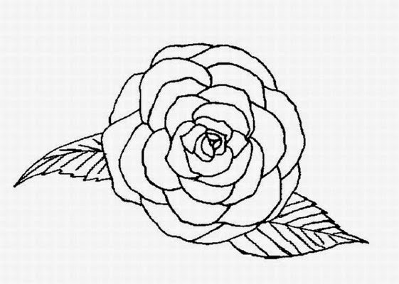 flowers coloring pages rose many flowers