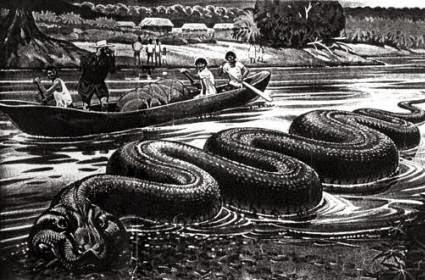 Anaconda: A Cobra Gigante