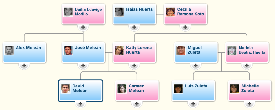 Family Tree Template Family Tree Template With Divorced Parents