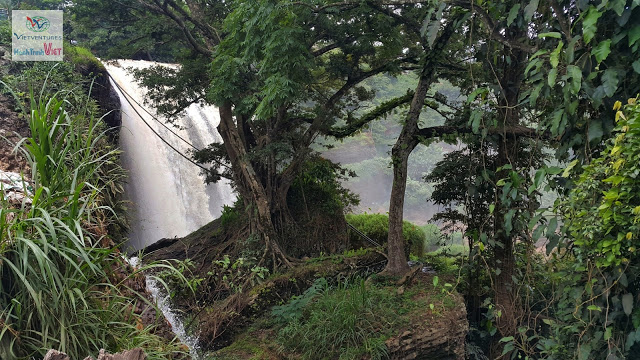 Découverte la cascade d'Eléphant à Dalat