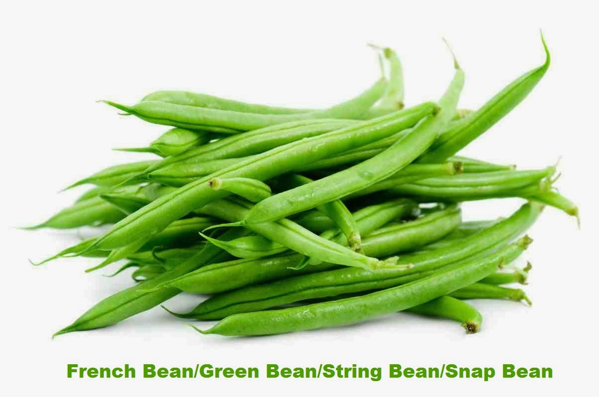 Growing French Beans to Earn Money