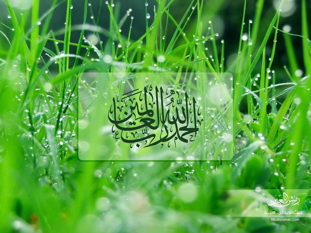 Beautiful Islamic Love Flowers