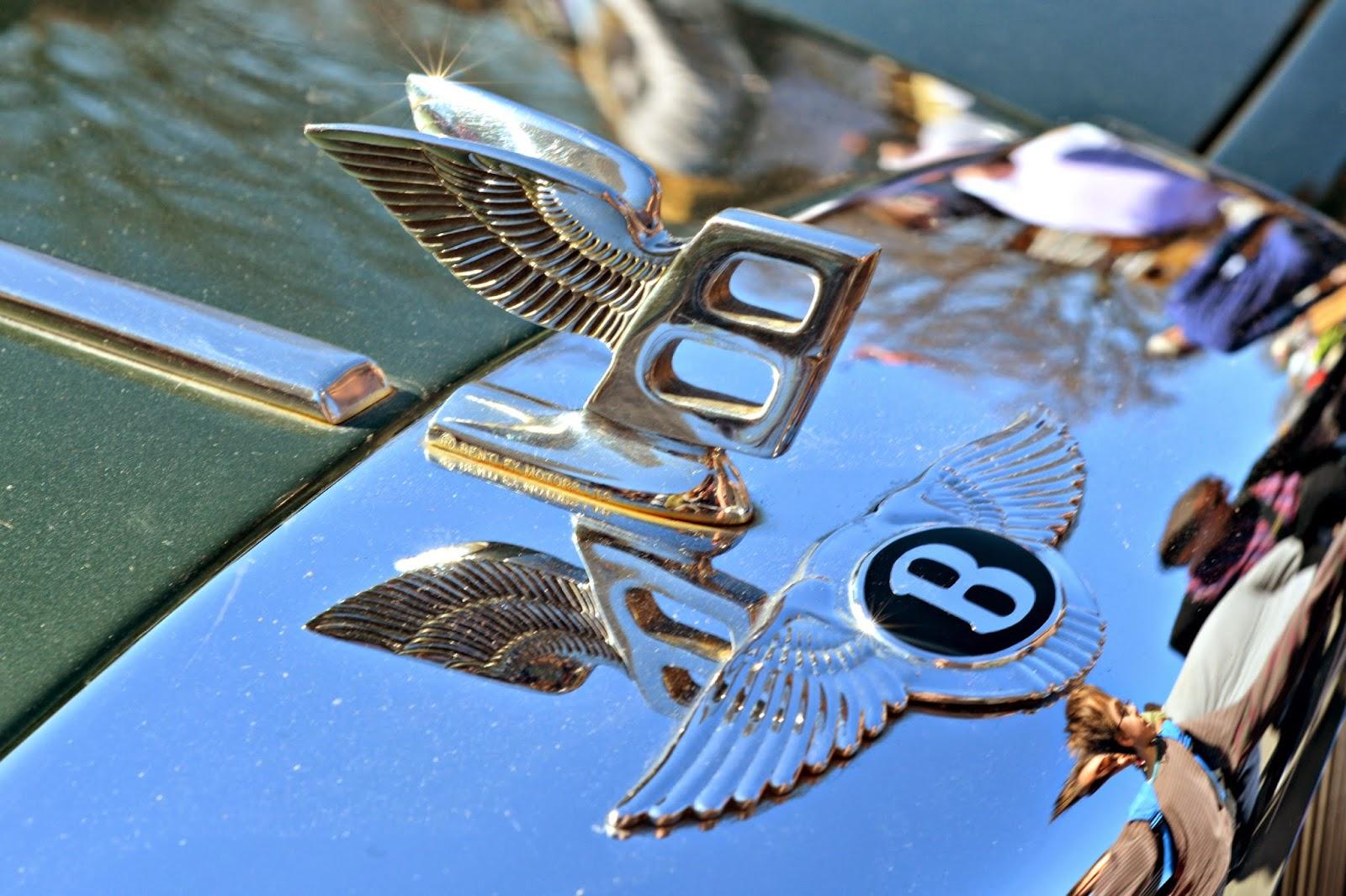 Bentley Wings Logo