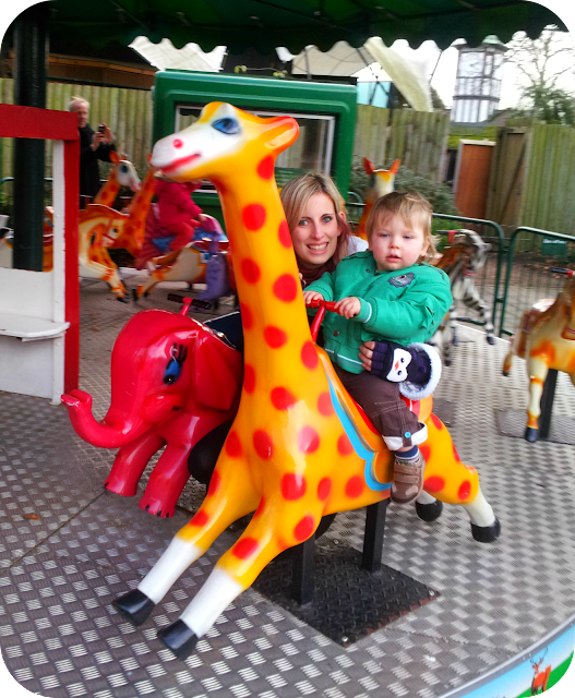 merry go round, london zoo attraction