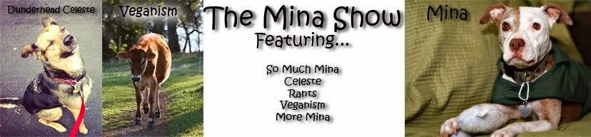 The Mina Show