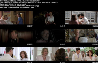 The Big Wedding (2013) 1080p BRRip 700MB