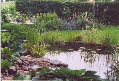 Cosas de hoyo taller para construir una charca natural for Charcas de jardin