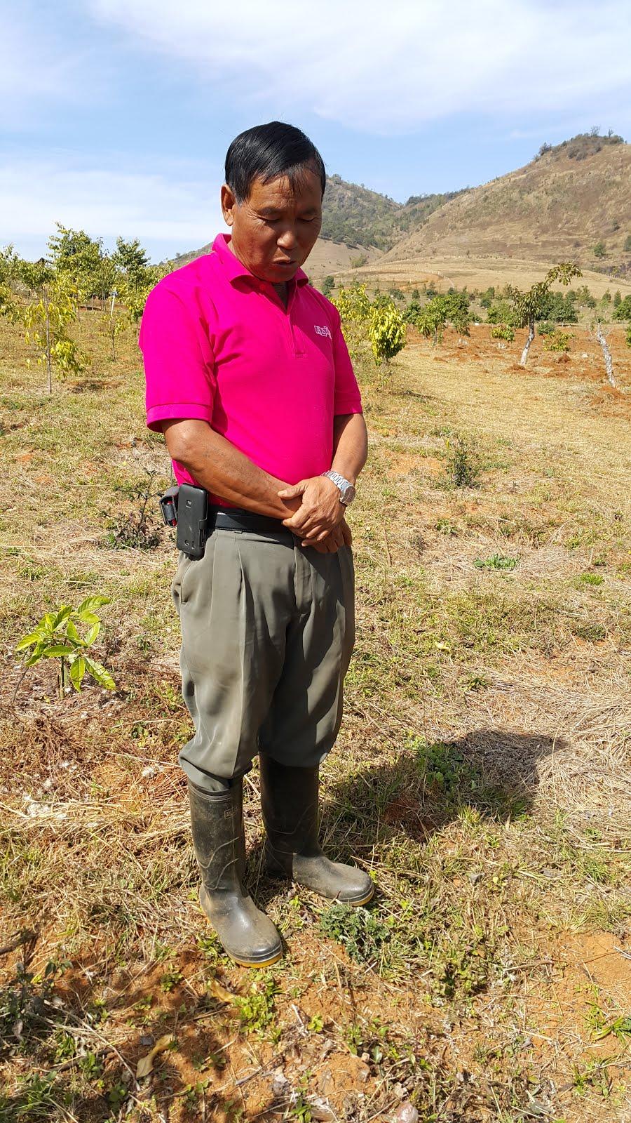 Tim's friend, U Khun Maung Myint, a tree farmer