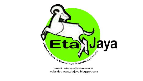 "PETERNAKAN & BUDIDAYA "" KAMBING ETAWA """