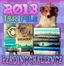 2013 TRB Pile