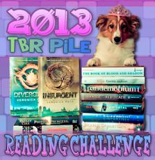 2013 TRB Pile