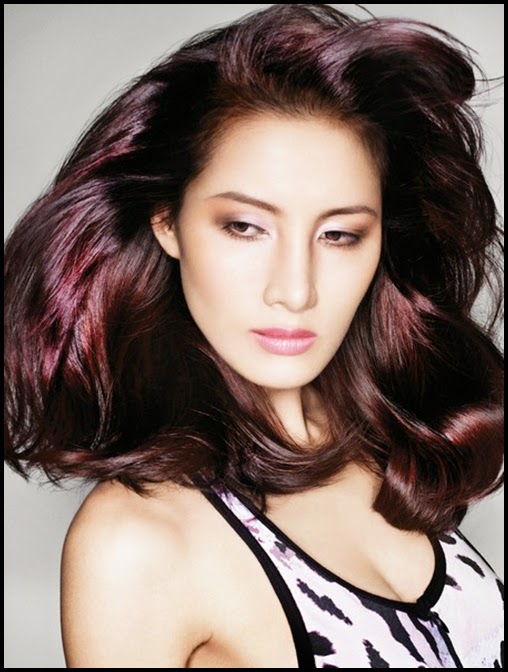 2014 Dark Brown Hair C... Dark Red Purple Brown Hair Color