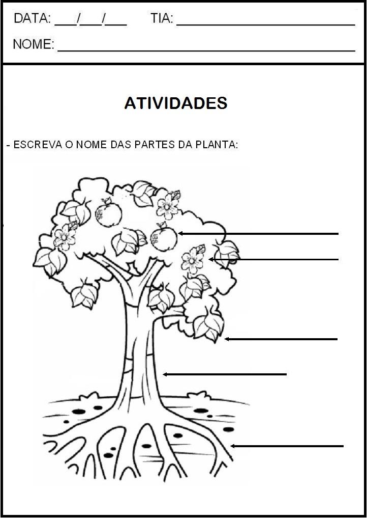 Amiga de brazil 2 - 3 part 8