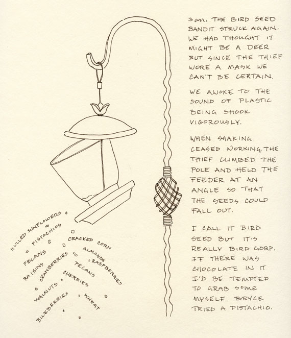 artist journal ink drawing of a bird feeder emptied by a raccoon