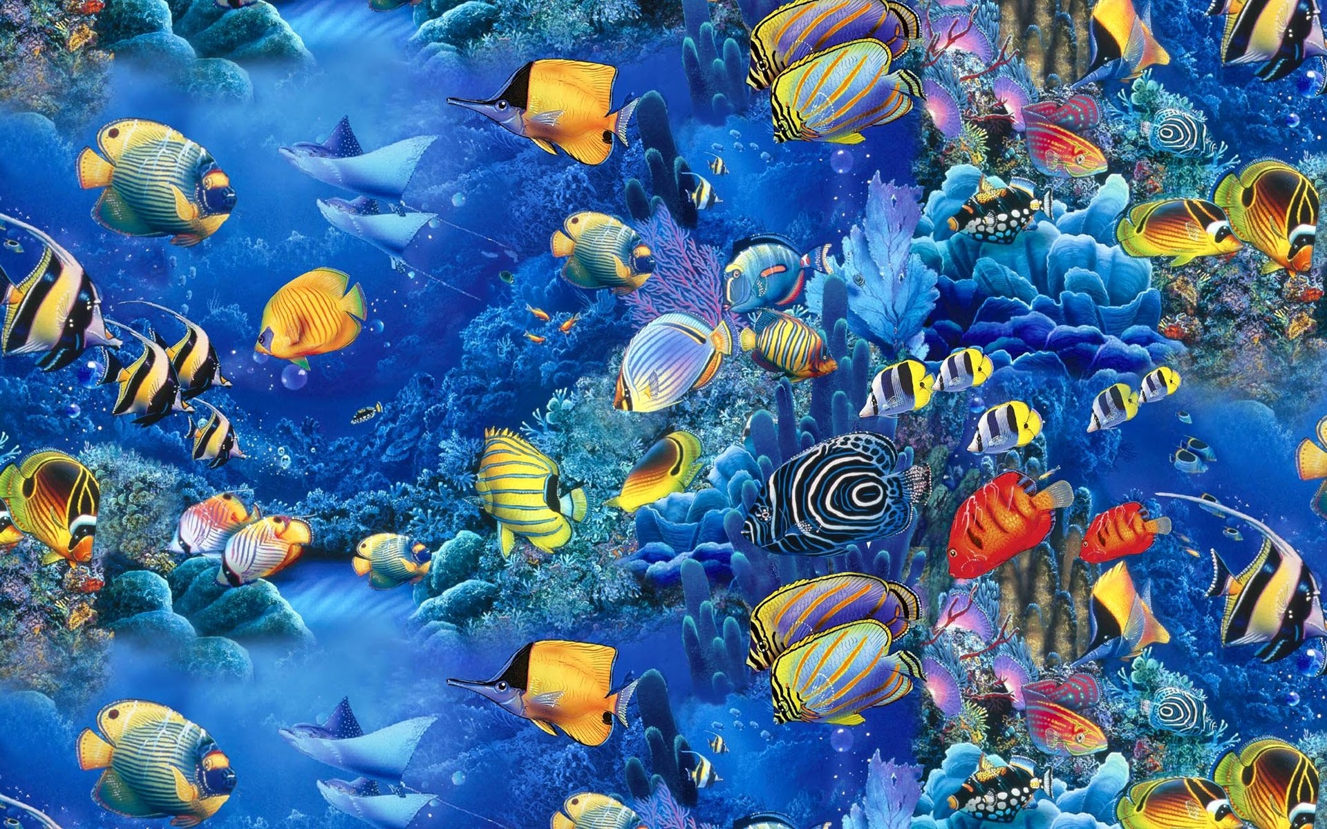 colorful fish wallpaper 1109960