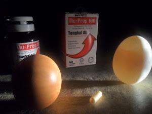 TONGKAT ALI NU-PREP 100.GERHANA BULAN 'eclipse' 10/12/2011 telur itik & ayam tegak berdiri.