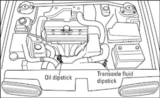 Step-By-Step Guide On Checking Your Oil