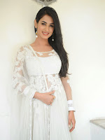 Sonal Chauhan Photos at Legend Interview-cover-photo