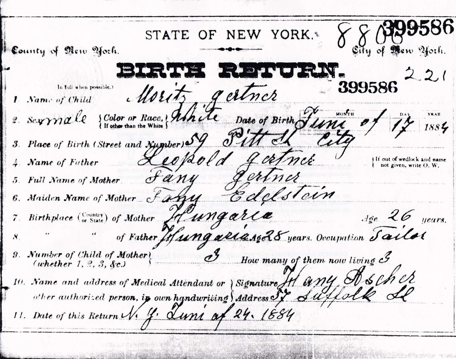 Leaves branches july 2015 new york state birth certificate for my grand uncle shows his name moritz gertner son of leopold fany edelstein gertner of 59 pitt street xflitez Gallery