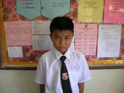 Pelajar UPSR Hafizie