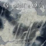 GANDALF'S OWL