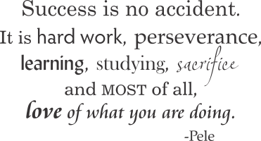 essay on perseverance and achievement