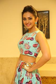 Actress Rakul Preet Singh  Pictures at Pandaga Chesko Success Meet  252819