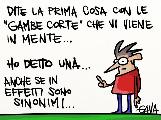 gavavenezia gava satira vignette venezia politica caricature ridere berlusconi bugie pinocchio gambe corte falso balle