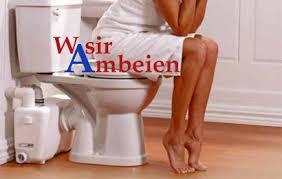 wasir atau ambeien